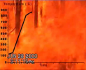High-intensity fire in dry wood forest caught on camera
