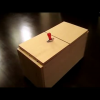Now I know why cats are intrigued by boxes